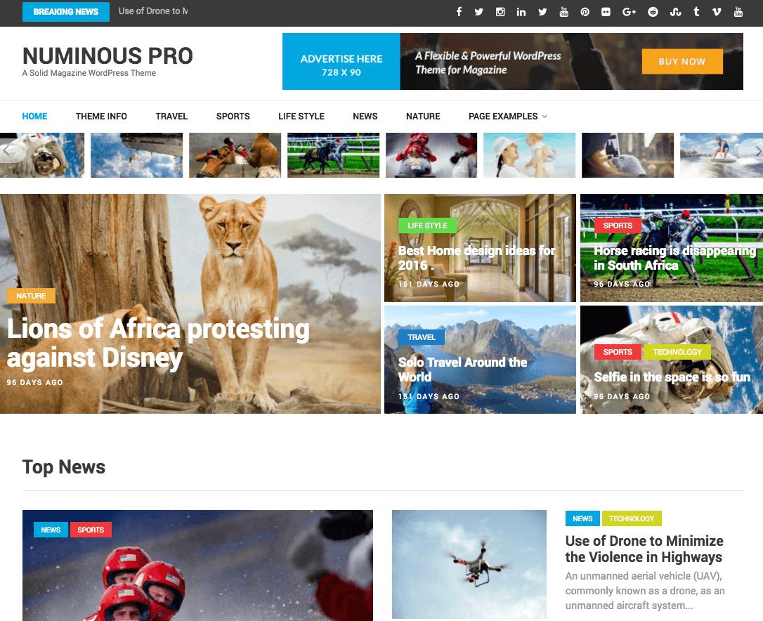 Numinous Pro wordpress pro theme