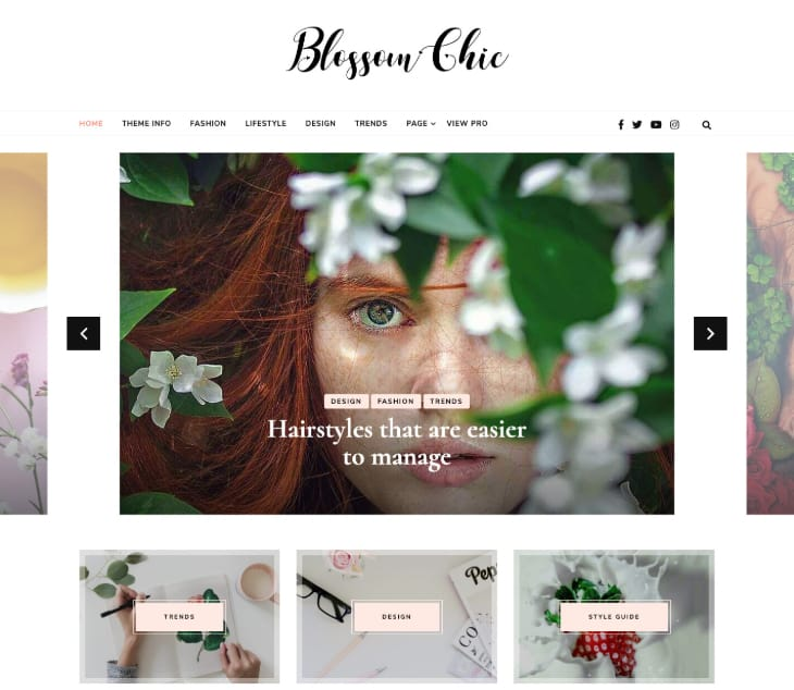 Blossom Chic WordPress Theme