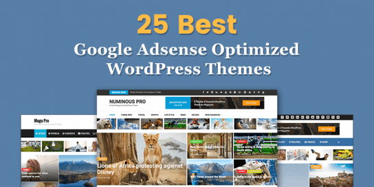 25 Best Google Adsense Optimized WordPress Themes