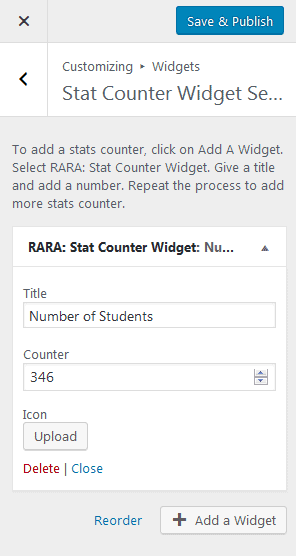 stat counter widget section 2.png
