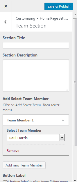 team section add member 2.png