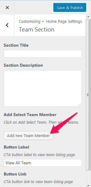 team section add member.png