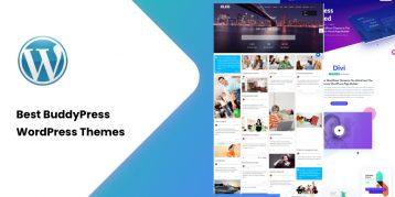 Best BuddyPress WordPress Themes