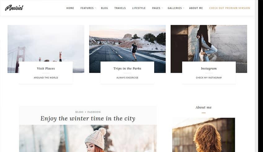 Anariel Free WordPress Theme