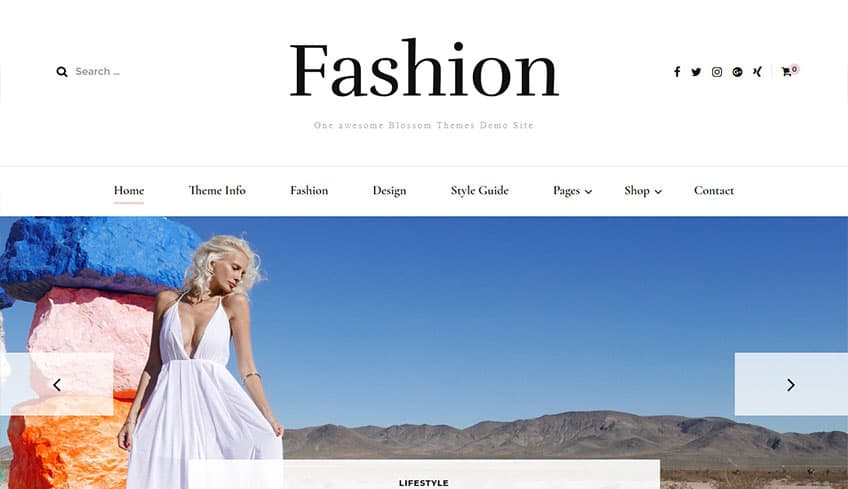 Fasshion Free WordPress Theme