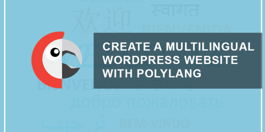 How To Create A Multilingual WordPress Website With Polylang