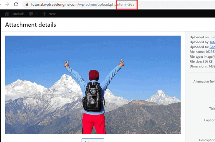How to find media ID