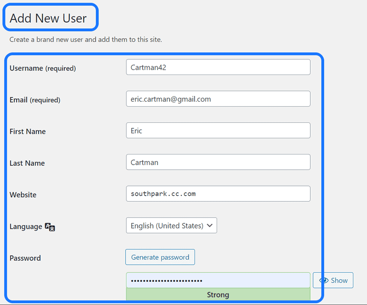 Inserting the login credentials in the Add New Users page of WordPress dashboard