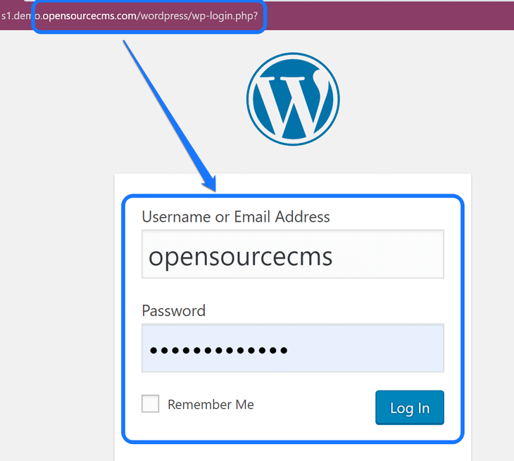 Inserting the username and password in the WordPress login panel