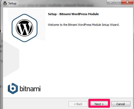 bitnami wordpress setup
