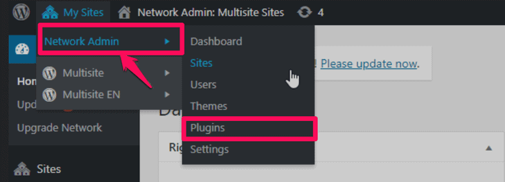 adding a new plugin to the multisite network