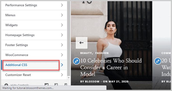 Additional CSS option