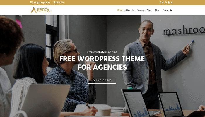 Agency Lite WordPress Theme