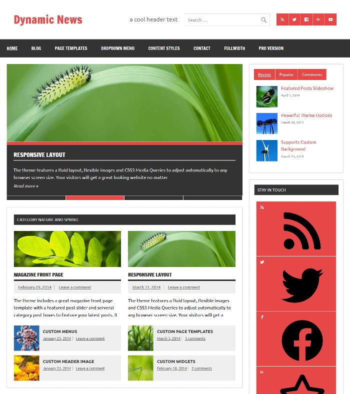 Dynamic News Lite WordPress Theme
